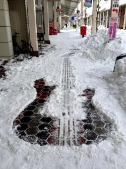 snow bass